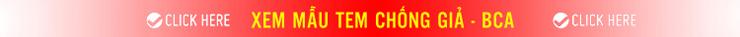 mẫu tem chống hàng giả bộ công an
